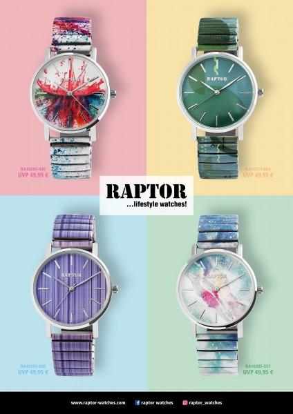 Raptor Poster, 1/2017